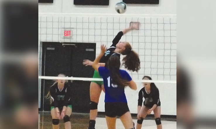 SHAC holds volleyball preview